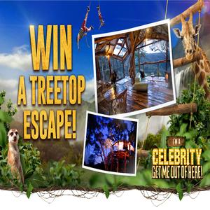 Win a Treetop Escape