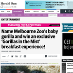 Win a 'Gorillas in the Mist' breakfast experience!