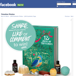 Win a LUSH '12 Days of Christmas' gift pack!